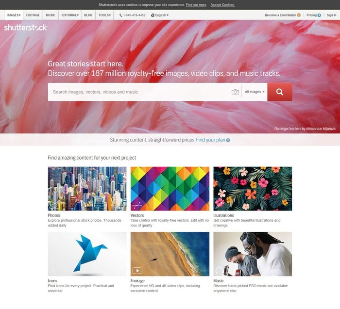 Shutterstock visual content tool